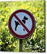 No Dogs Allowed Sign Canvas Print
