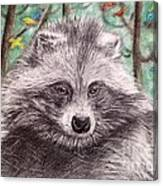 Stop Fur Trade  Canvas Print