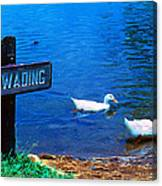 No Wading Canvas Print