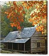 Noah Bud Ogle Farm Autumn Sunshine Canvas Print