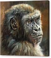 Noble Ape Canvas Print