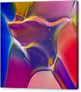Noble Colors Canvas Print