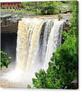 Noccalola Falls Canvas Print