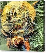 Noland Canvas Print