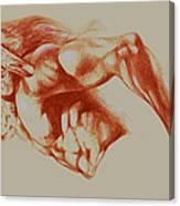 North American Minotaur Red Sketch Canvas Print