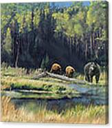 North American Waterhole Canvas Print