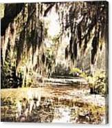 North Carolina 8 Canvas Print