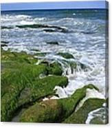 North Carolina Coastal Rocks Canvas Print