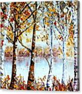North Country Lake Superior Birch Trees Early Autumn Canvas Print