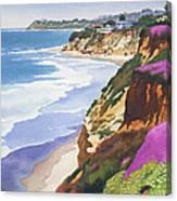 North County Coastline Canvas Print