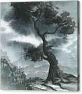 North Korea Canvas Print