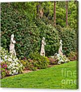 North Vista - Spring Flower Blooms At The North Vista Lawn Of The Huntington Library. Canvas Print
