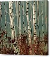 Northern Birch Canvas Print