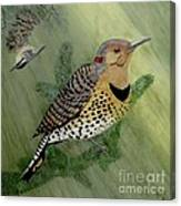 Northern Flicker And Red-breasted Nuthatch Canvas Print