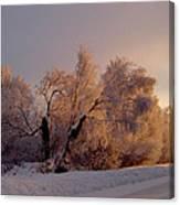 Northern Light Canvas Print