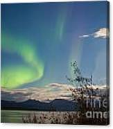 Northern Lights Full Moon Over Lake Laberge Yukon Canvas Print