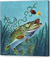Northern Pike Spinner Bait Canvas Print