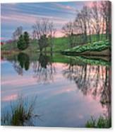 Northfield Daffodils Sunset Canvas Print