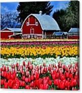 Northwest Splendor Canvas Print