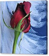 Not Just Another Rose Photograph Art Canvas Print