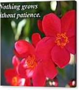Nothing Grows Without Patience Canvas Print