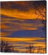November Skies Canvas Print