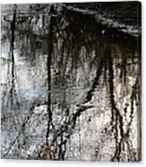 November's Rippled Reflections Canvas Print