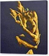 Nude - Ecstasy Canvas Print
