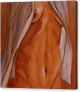 Nude In Shirt IIi Canvas Print