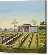 Nursery Garden, C.1820-40 Canvas Print