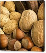 Nuts On Burlap Canvas Print