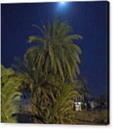 Nuweiba By Night Sinai Egypt Canvas Print