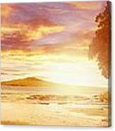Nz Sunlight Canvas Print