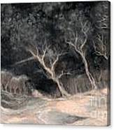 O2 Canvas Print