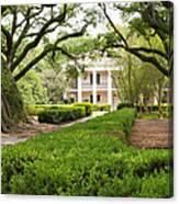 New Orleans Oak Alley Plantation Canvas Print