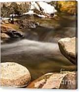 Oak Creek 2 Canvas Print