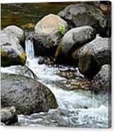 Oak Creek Water And Rocks Canvas Print