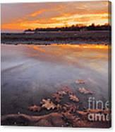 Oak Leaf And Beach Sunset Canvas Print