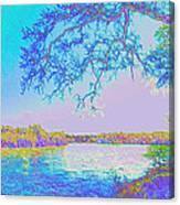 Oak On The Sacramento River - Pastel Canvas Print