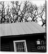 Oak Tree Farm House Canvas Print