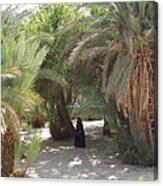 Oase Rest Desert Sinai Egypt Canvas Print