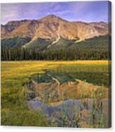 Observation Peak And Coniferous Forest Canvas Print