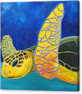 Obx Turtle Canvas Print