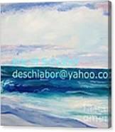 Ocean Assateague Virginia Canvas Print