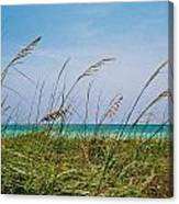 Ocean Breezes Canvas Print
