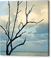 Ocean Tree Canvas Print