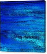 Oceanic Canvas Print