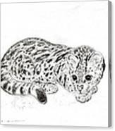 Ocelot Kitten Canvas Print
