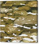 Ocoee River Canvas Print
