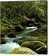 Oconaluftee River Canvas Print